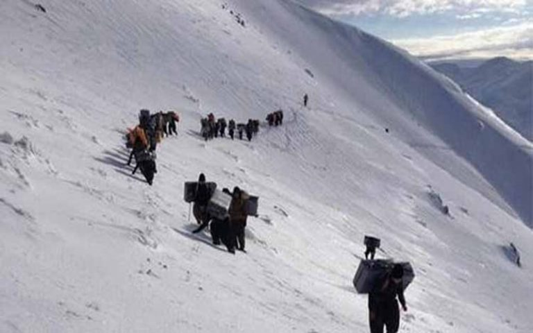 Growing Rate of Female Porters