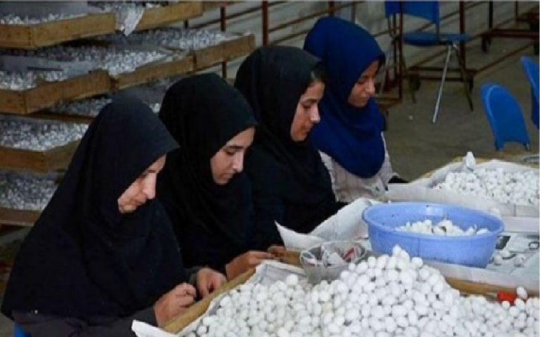 One Million Women Have Become Unemployed in Iran Due to the Coronavirus